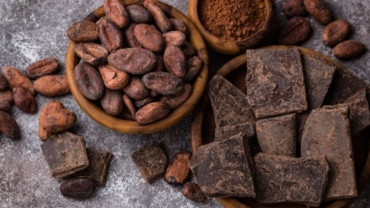 Bean-to-Bar : quand le chocolat devient produit d'exception